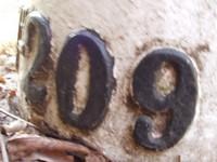 Grenspaal 209