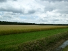 Deel Roovertse Heide