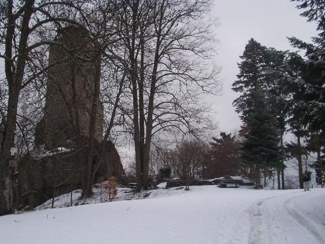 D203 – Châtenois