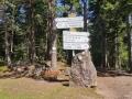 Forêt de Barr