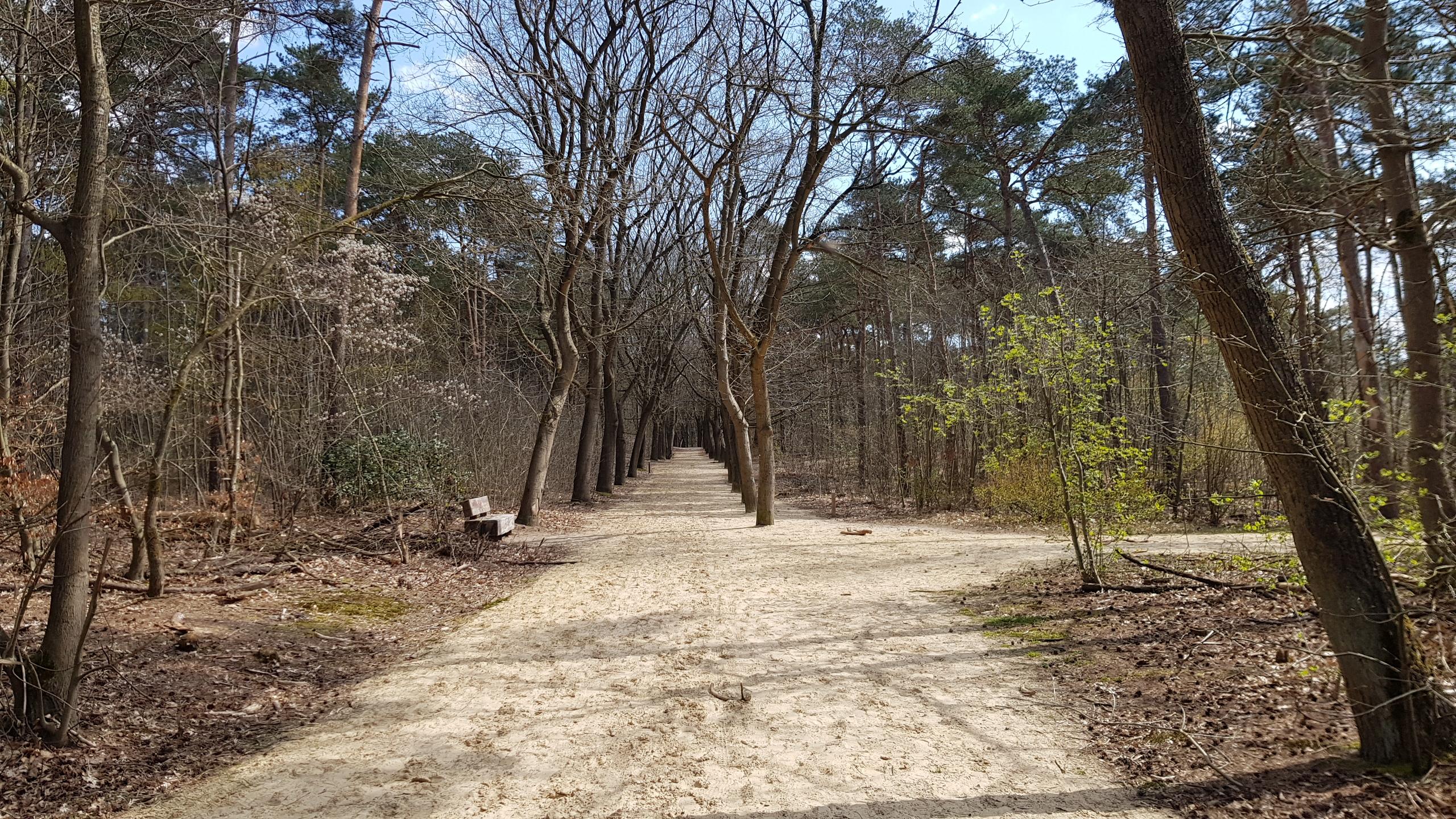 Bergse Heide