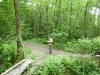 Bois d'Harcy