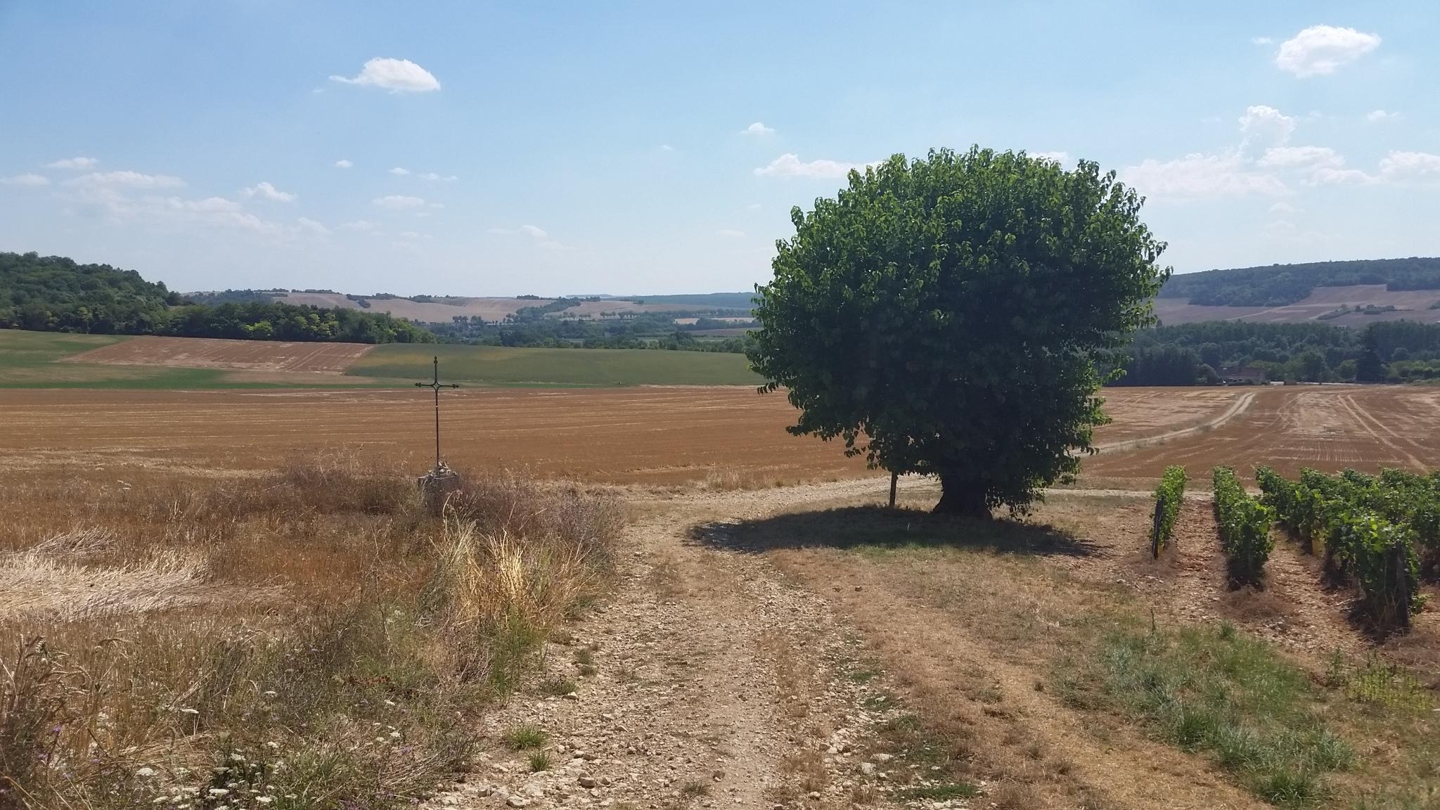 Plain de Bréau