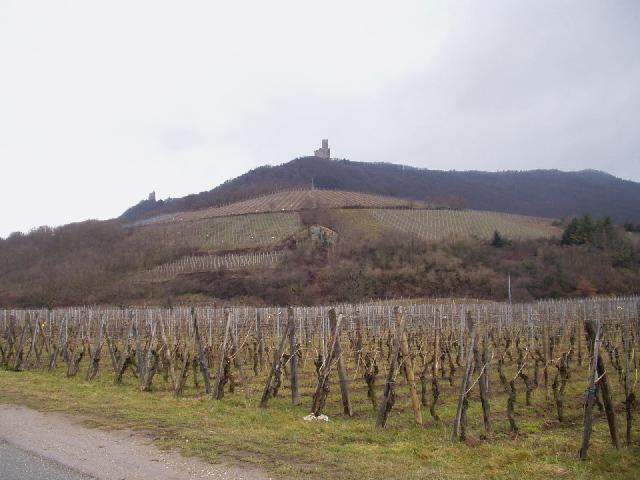 Ruines de l'Ortenbourg en Ramstein