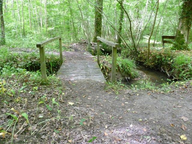 Forêt Domaine de Signy-l\'Abbaye
