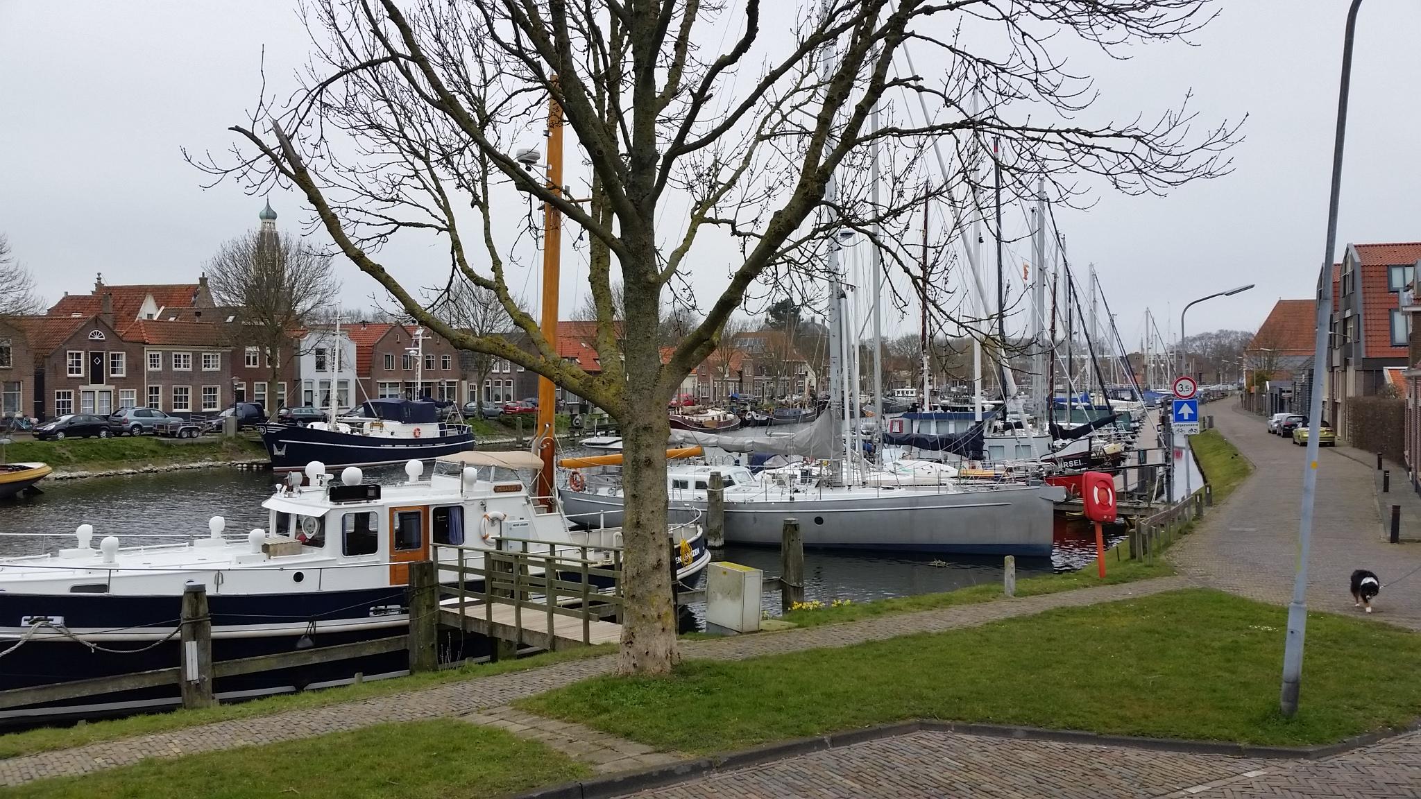 Oosterhaven Enkhuizen