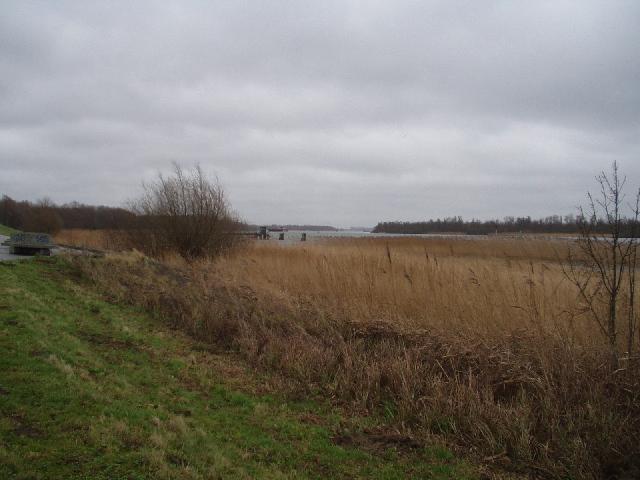 Zicht op de Oude Maas