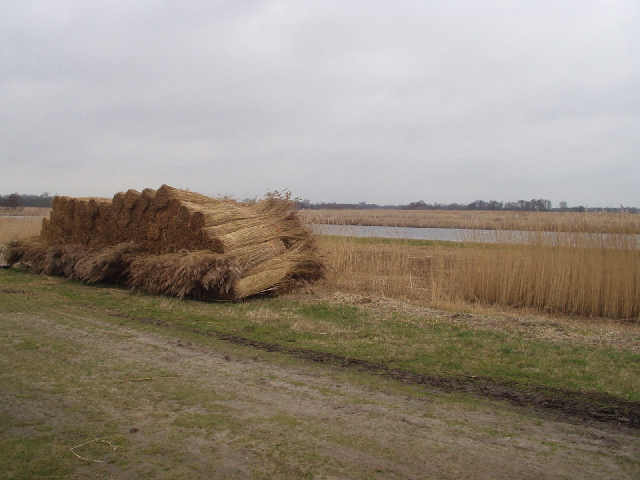 Bij Nederland