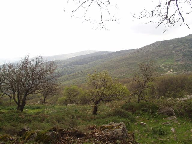 Sardinië: Monte Rasu