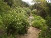 Sardinië: Punta Giradili