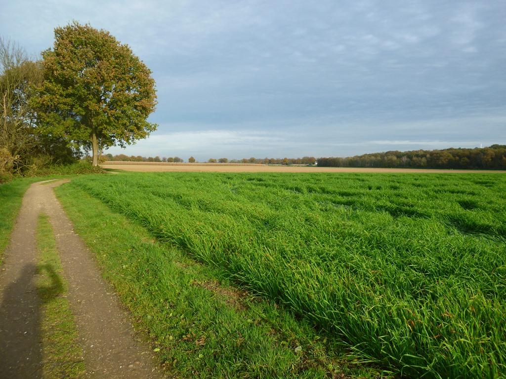 Ohé Broekerveldweg