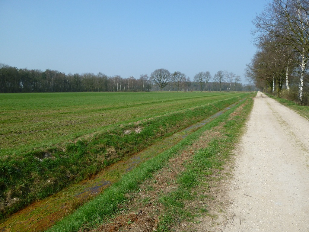 Boschweg