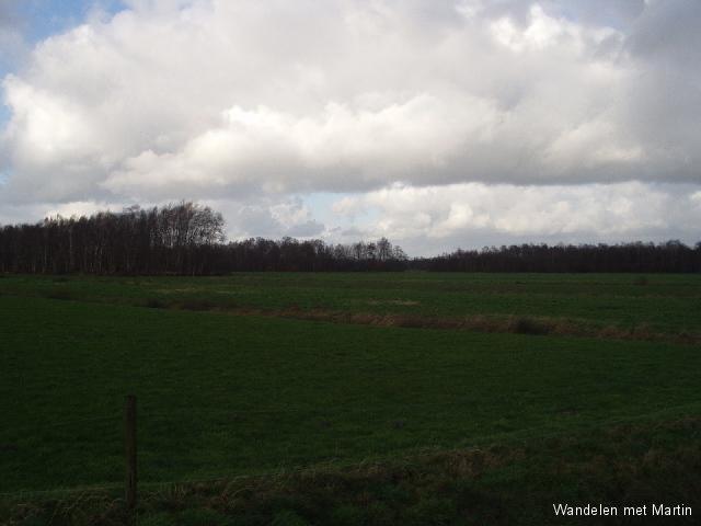 Zunasche Heide