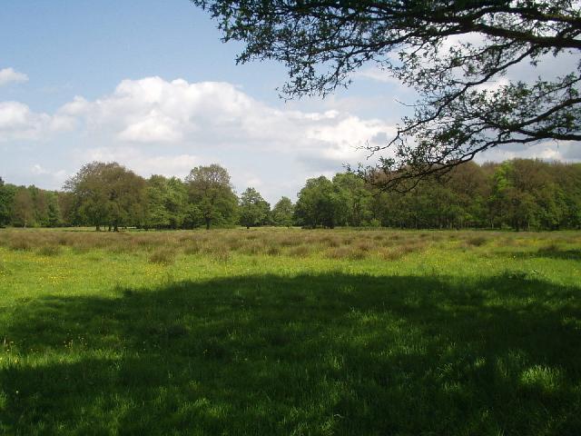 Metbroekbosch