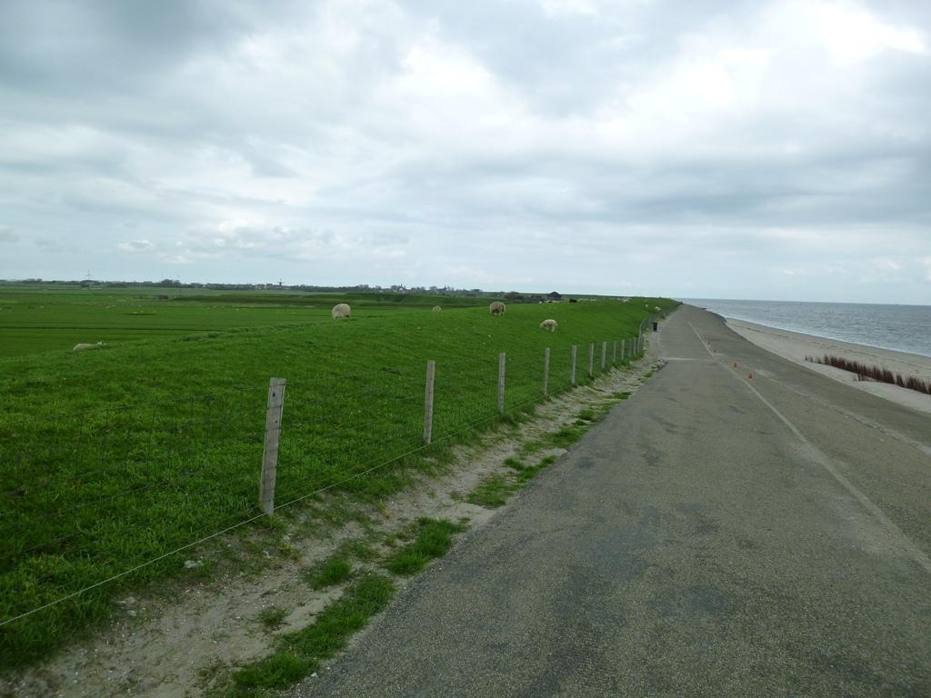 Waddendijk