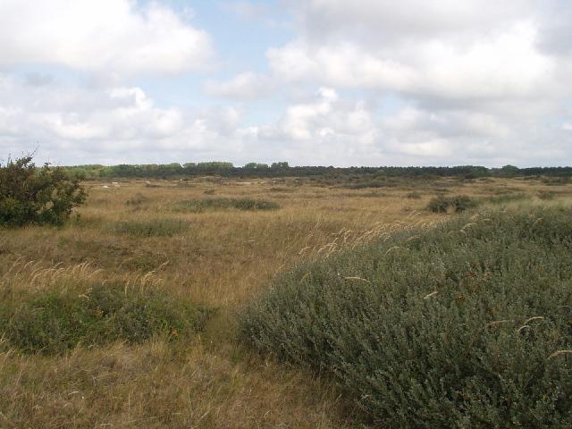 Noord-Hollands duinreservaat