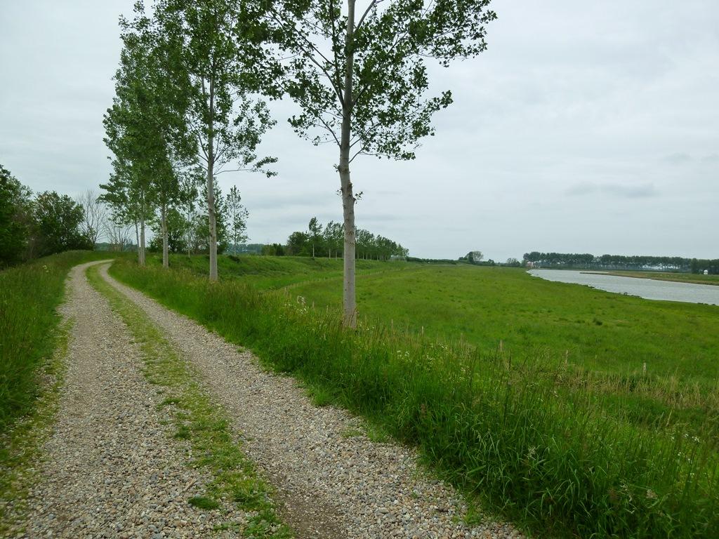 Oude Zeedijk - Goes