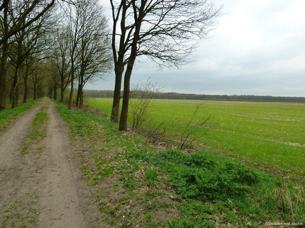 Helvoirtse Heide