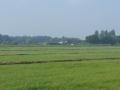Jaagpad Amstel