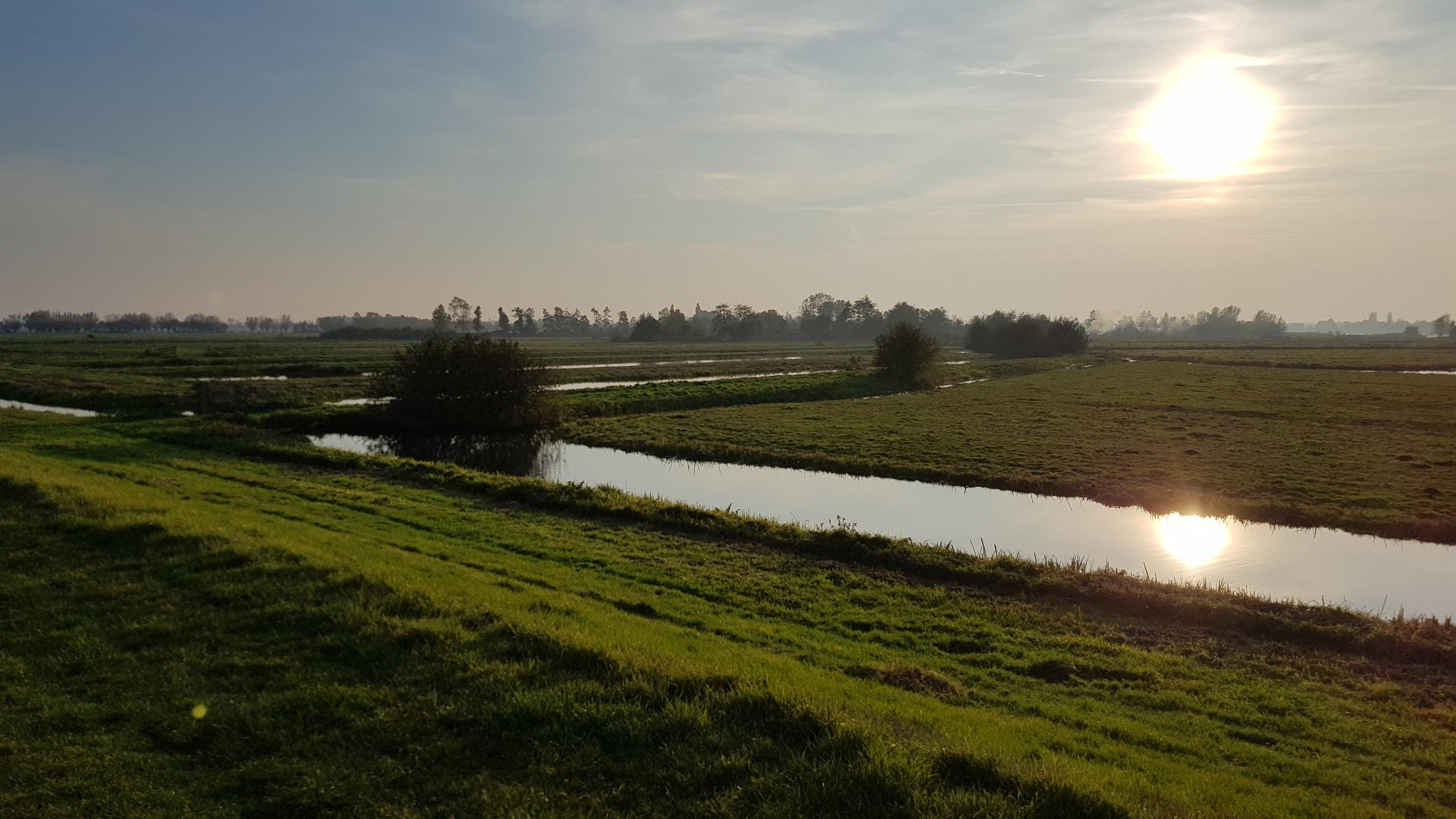 Polders bij Bodegraven