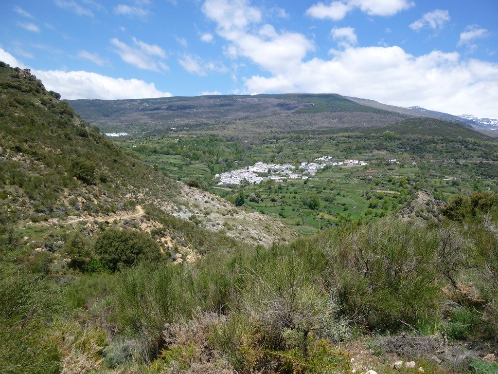 Andalusië - Ferreirola
