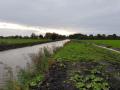 Scheendijk