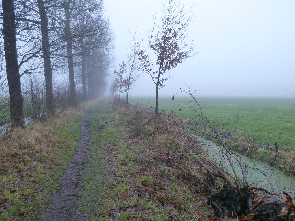 Broekweg