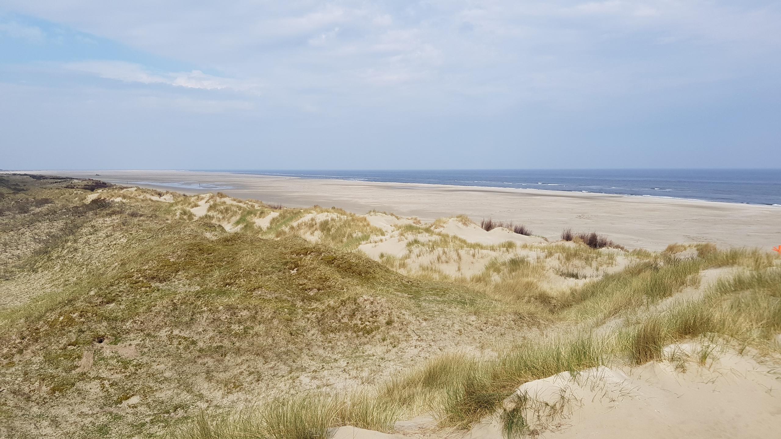 Olde Dunen
