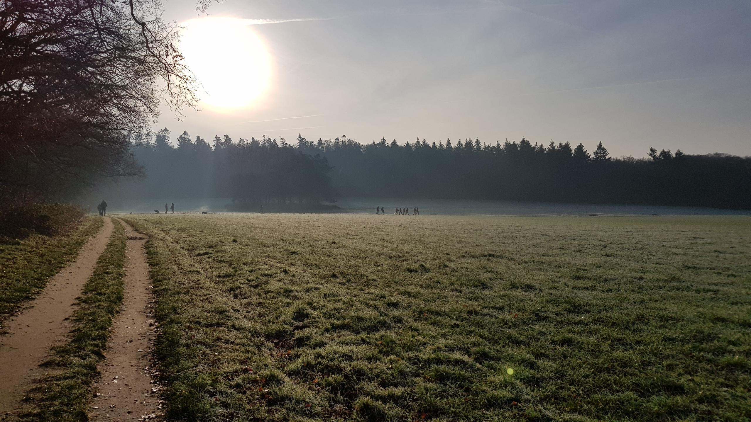 Park Zypendaal