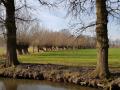 Landgoed Sterkenburg