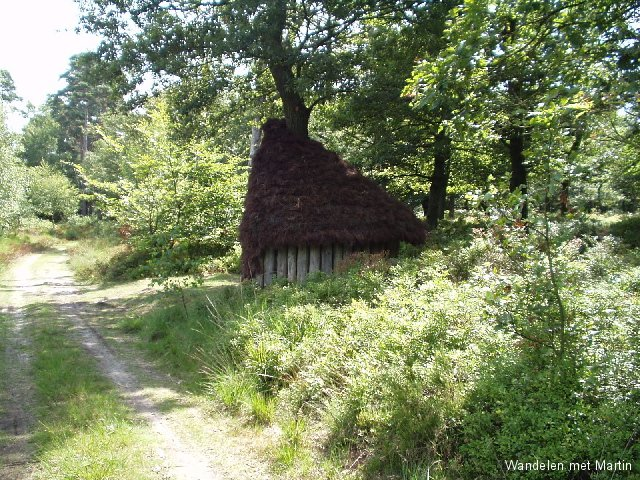 Hut in Wieselse Bos