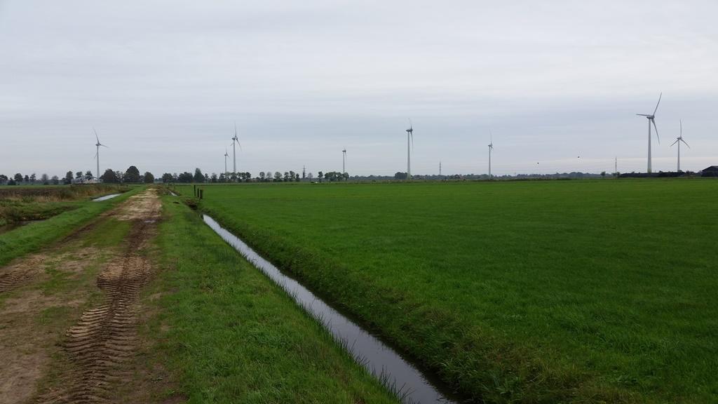 Tolhuis Landen