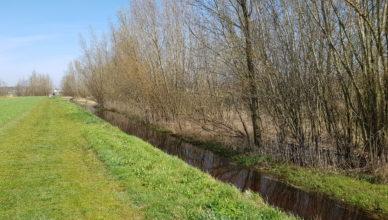 Noord Brabant Wandelen Met Martin