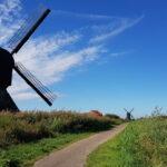 Woudrichem - De Biesbosch